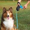 Λουριά Σκύλων: Επιλέγοντας το καταλληλότερο λουρί για το δικό σας σκύλο